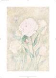 Peony Prints by C. C. Wilson