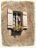 Fenêtre en stuc Affiches par Chuck Huddleston