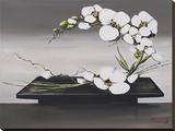 Bonheur D'Orchidées Blanches II Stampa su tela di Olivier Tramoni