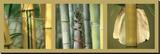 Bambous Reproduction sur toile tendue par Laurent Pinsard