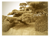 Tokyo Park Prints by  NaxArt