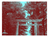 Nikko Gate Prints by  NaxArt