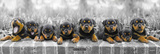 Keith Kimberlin-Puppies Affiches