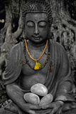 Buddha Stone Print