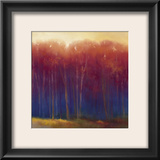Deep Woods in Autumn Framed Giclee Print by Teri Jonas