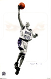 Sacramento Kings - Jason Williams Prints