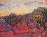 黄色い空と輝く太陽のオリーブ林 1889年 高画質プリント : フィンセント・ファン・ゴッホ