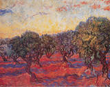 Distesa di olivi, 1889 circa Stampa di Vincent van Gogh