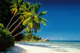 Playa, nuevo día Láminas