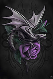 Anne Stokes-Dragon Beauty Photo