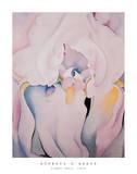 Georgia O'Keeffe - Light Iris 1924 - Poster