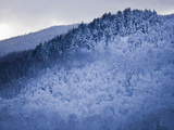 Winter Snow Whitens Mount Van Hoevenberg Photographic Print by Michael Melford