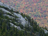 Conifers Green the Crevices of Catamount Mountain Lmina fotogrfica por Michael Melford