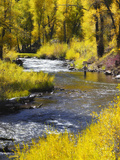 A Fly Fisherman Casts on Beautiful Autumn Day Photographic Print by Robbie George