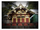 Nikko Architecture With Gold Roof Poster by  NaxArt