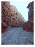 Canyon Prints by  NaxArt