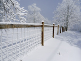 A Fence Divides the Landscape in a Snowy Scenic Photographie par Amy &amp; Al White &amp; Petteway