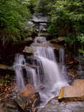 A Beautiful Gentle Waterfall in a Forested Scenic Photographic Print by Amy & Al White & Petteway