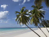 White Sand Beach, Bridgetown, Barbados, West Indies, Caribbean, Central America Photographic Print by Angelo Cavalli