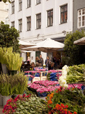 Flower Shop on Ostergade, Copenhagen, Denmark, Scandinavia, Europe Photographic Print by Frank Fell