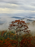 Autumn Colors and Low-Lying Clouds in the Blue Ridge Mountains Photographic Print by Amy & Al White & Petteway