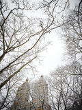 View of the San Remo Apartments from Central Park after a Snow Storm Photographic Print by Keith Barraclough