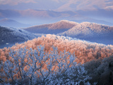Snow and Rime Ice Coat a Blue Ridge Mountain Landscape at Dawn Photographic Print by Amy & Al White & Petteway
