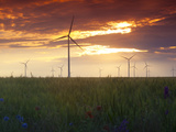 Wind Turbines at Sunset, Kavarna Wind Farm, Kavarna, Bulgaria, Europe Photographic Print by Dallas &amp; John Heaton