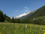 Canton Uri, Swiss Alps, Switzerland, Europe Fotografisk tryk af Angelo Cavalli