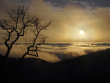 Silhouetted Tree and Sunset Through Low Clouds Photographie par Amy & Al White & Petteway