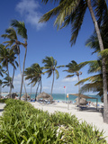 Bavaro Beach, Punta Cana, Dominican Republic, West Indies, Caribbean, Central America Photographic Print by Frank Fell