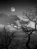 A Nearly Full Moon Sets over the Blue Ridge Mountains at Dawn Fotografisk tryk af Amy & Al White & Petteway