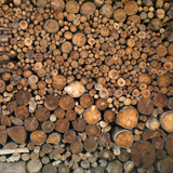 Wood Pile in the Walser Village of Grimentz, Valais, Swiss Alps, Switzerland, Europe Photographic Print by Angelo Cavalli