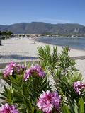 Beach Scene, Alykanas, Zakynthos, Ionian Islands, Greek Islands, Greece, Europe Photographic Print by Frank Fell
