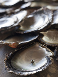 A Black Pearl in an Oyster Shell Photographic Print by Aaron Huey