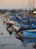 Line of Fishing Boats at Dusk in the Harbour, Sozopol, Black Sea, Bulgaria, Europe Photographic Print by Dallas & John Heaton