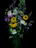 A Scan of a Bouquet of Wildflowers Photographic Print by Amy & Al White & Petteway