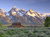An Old Mormon Barn Sits at the Base of Grand Teton Fotografisk tryk af Robbie George