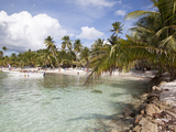 Saona Island, Dominican Republic, West Indies, Caribbean, Central America Photographic Print by Frank Fell