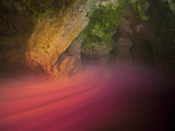 In Sawmill Sink, Poisonous Hydrogen Sulfide Gas Is Present Beneath the Bacterial Layer Photographic Print by Wes C. Skiles