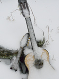 Ice Coats a Mandolin and a Guitar Left Outside as an Art Project Photographic Print by Amy & Al White & Petteway