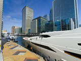Canary Wharf, Docklands, London, England, United Kingdom, Europe Photographic Print by Alan Copson