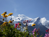 Mont Blanc, Chamonix, Haute Savoie, French Alps, France, Europe Photographic Print by Angelo Cavalli