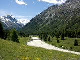 River Near St. Moritz, Canton Graubunden, Swiss Alps, Switzerland, Europe Photographic Print by Angelo Cavalli
