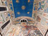 Giotto Frescoes in the Scrovegni Chapel (Cappella Degli Scrovegni), a Church in Padua, Veneto, Ital Photographic Print by Carlo Morucchio