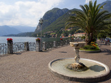 Promenade, Menaggio, Lake Como, Lombardy, Italian Lakes, Italy, Europe Photographic Print by Frank Fell