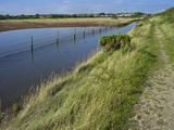 View of Salt Marshes from the Solent Way Footpath, New Forest National Park, Lymington, Hampshire,  Photographic Print by David Hughes