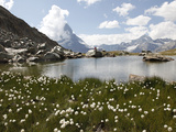 Lake Riffelsee and the Matterhorn, Zermatt, Valais, Swiss Alps, Switzerland, Europe Photographic Print by Hans-Peter Merten