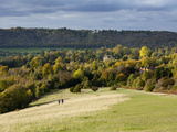 Autumn View North Along the Burford Spur of Box Hill, Surrey Hills, North Downs, Dorking, Surrey, E Photographic Print by John Miller