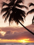 Tropical Sunset, Bridgetown, Barbados, West Indies, Caribbean, Central America Photographic Print by Angelo Cavalli